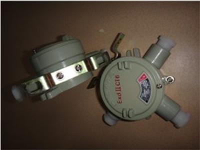 温州专业的防爆接线箱厂家推荐-防爆1.2寸四通接线盒