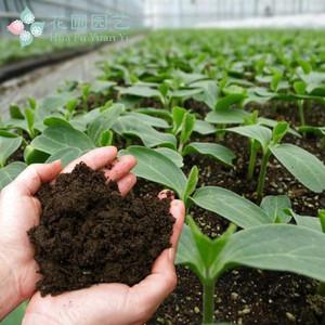 来湖南省吉祥天生物科技,买高质量的有机肥|果蔬专用肥价格如何