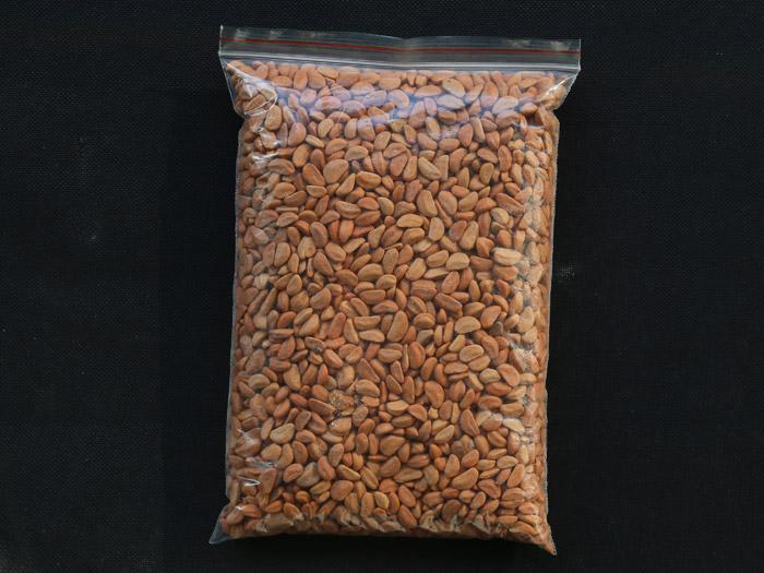 成孔剂价格|山东价格合理的成孔剂-供应
