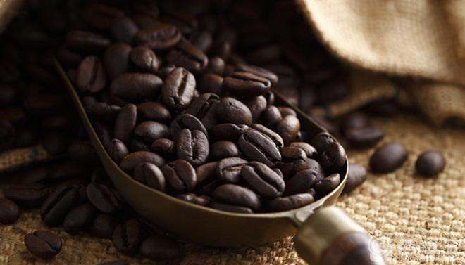 咖啡豆代理商|价格划算的咖啡豆要到哪里买