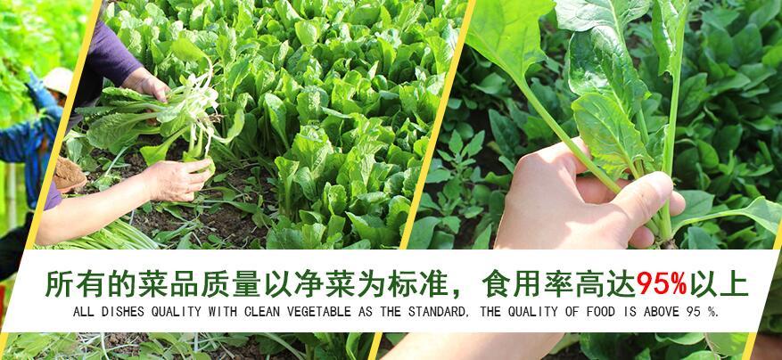 蔬菜配送哪家口碑不错-怎么选择果蔬配送