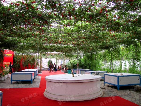 农业观光园设计,供应山东优惠的大型盆栽定植