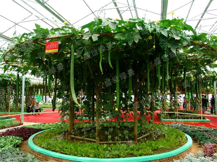 蔬菜雕塑设计施工-雕塑景观优选盛世绿景景观工程