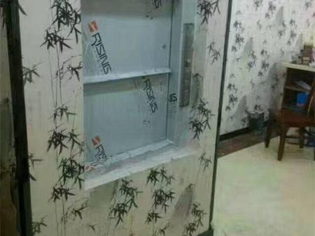 伊犁哈萨克家用电梯价格-口碑好的杂物电梯昌吉回族自治州哪里有售