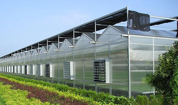 广西蔬菜大棚制作 广西温室大棚认准广西嘉丰隆农业