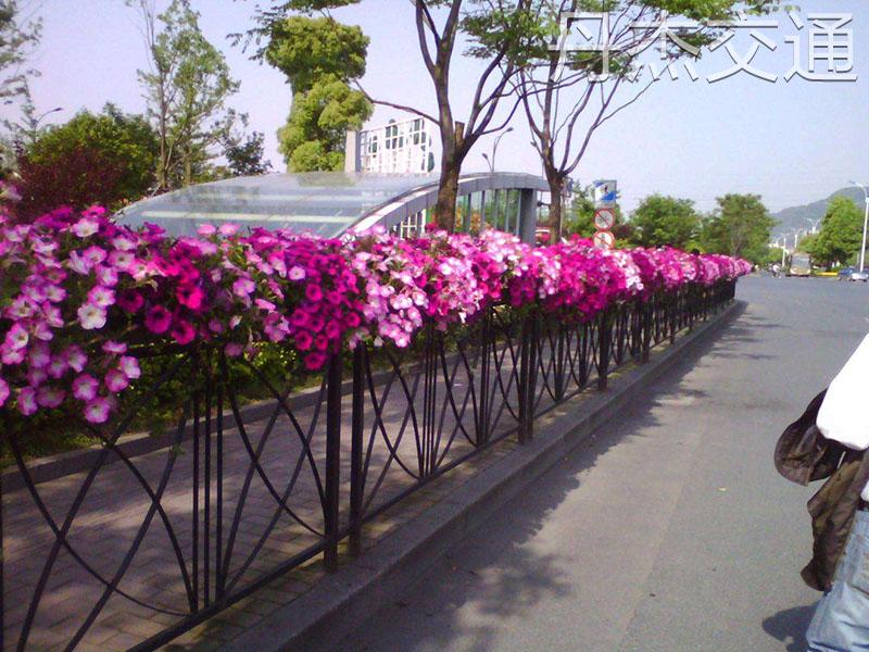 优质花箱护栏供应商-造型美观的花箱护栏要上哪买