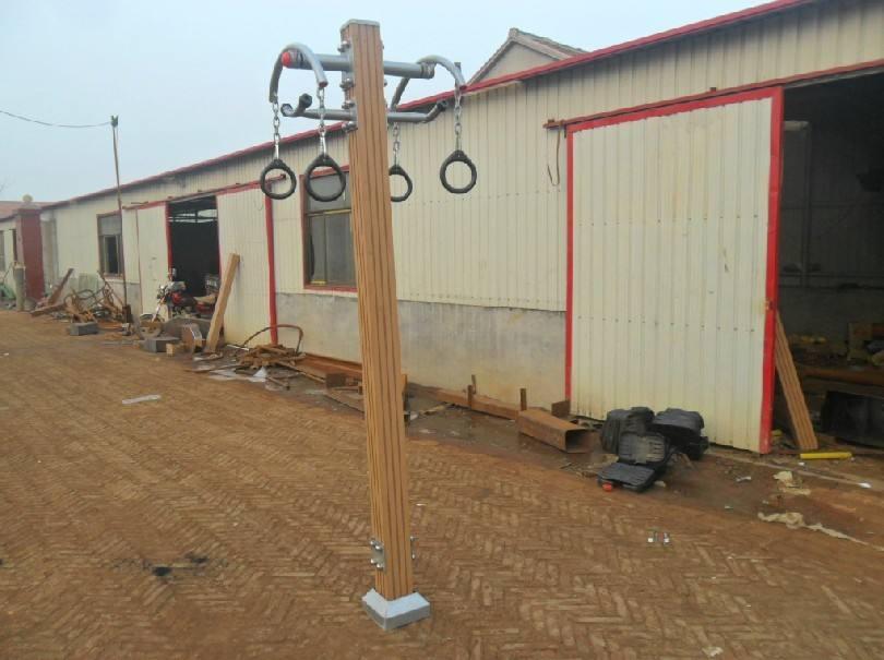 克拉玛依地区-河北制作精巧的塑木健身器材供应