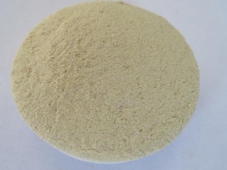 朝陽專業的枯草芽孢桿菌生產廠家,吉林地衣芽孢桿菌原料廠家