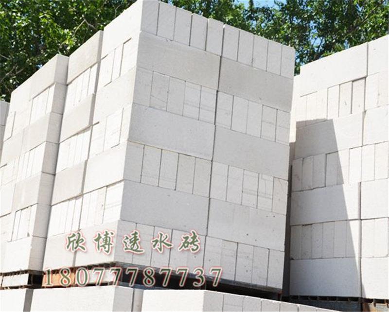 北海水泥泡沫砖-广西欣博水泥_知名的泡沫砖供应商