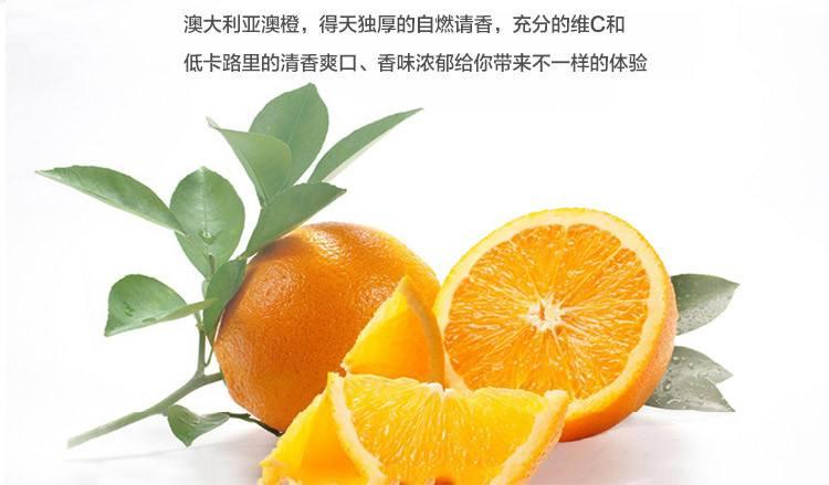 价格实惠的批发进口水果推荐_澳洲橙子