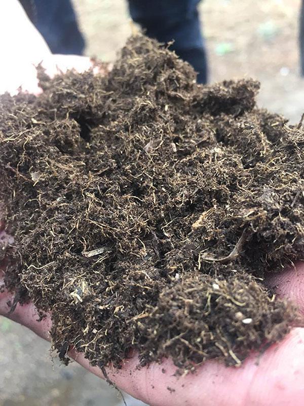 东北食用菌草炭批发-供应辽宁高性价泥炭土