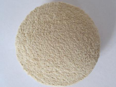 想買質量不錯的飼用復合酶,就來朝陽華星生物工程_飼用復合酶