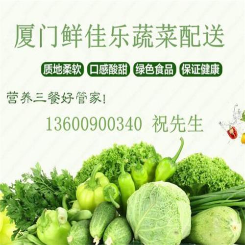 蔬菜配送优选厦门鲜佳乐农产品 蔬菜配送服务