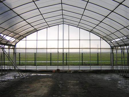 山东双拱双膜大棚温室 双拱双膜大棚温室专业设计建造