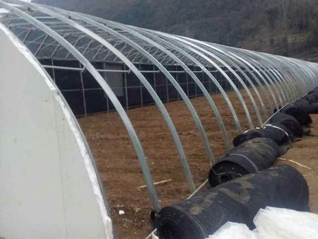 日光温室大棚承建 哪家日光温室大棚性价比高 日光温室工程