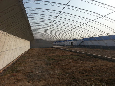 蔬菜大棚建造商:温室大棚种植蔬菜有哪些优势?