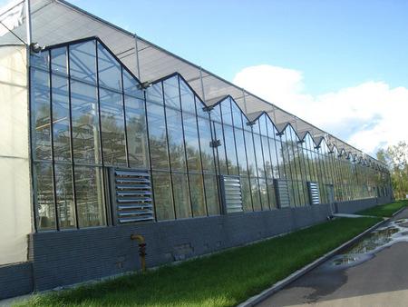 陽光板溫室大棚報價-靠譜的陽光板溫室大棚建造