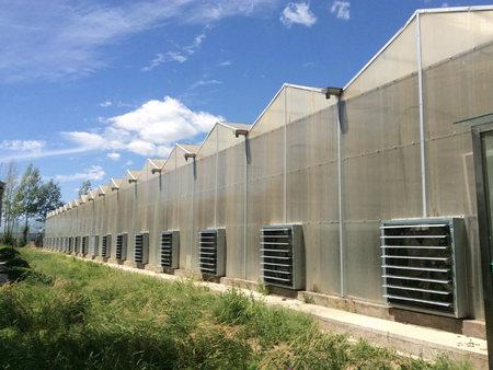 来这,阳光板温室!阳光板温室报价,阳光板温室建造