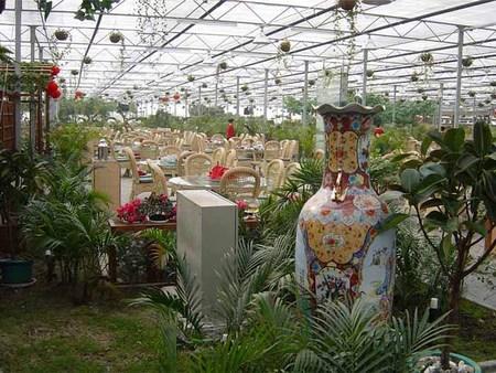 新型纹络式温室大棚承建哪家好-花卉苗圃优选哪种温室大棚