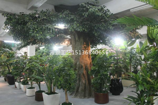 仿真樹廠家_來源景花卉工藝,買口碑好的軟裝裝飾仿真植物墻