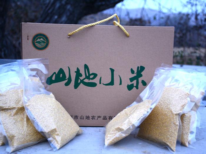 小米多少钱一斤_潍坊哪里有供应实惠的小米
