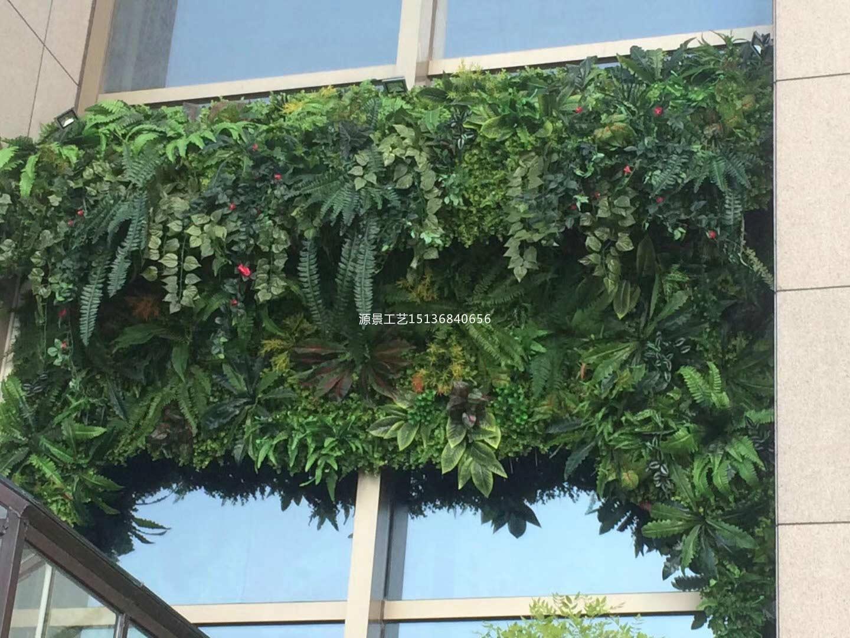 河南实惠的仿真植物墙_仿真绿植墙厂家