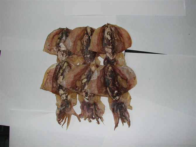 湛江海味厂家-可信赖的海味厂家倾情推荐