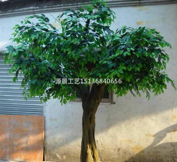 想买优良仿真榕树,就到源景花卉工艺 -焦作仿真榕树