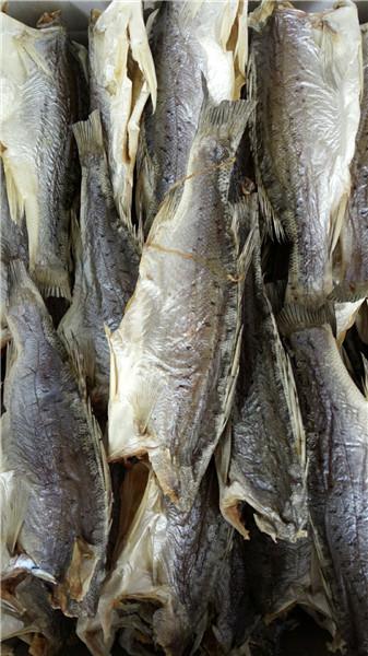 广州海味|具有口碑的海味厂家就是源发食品