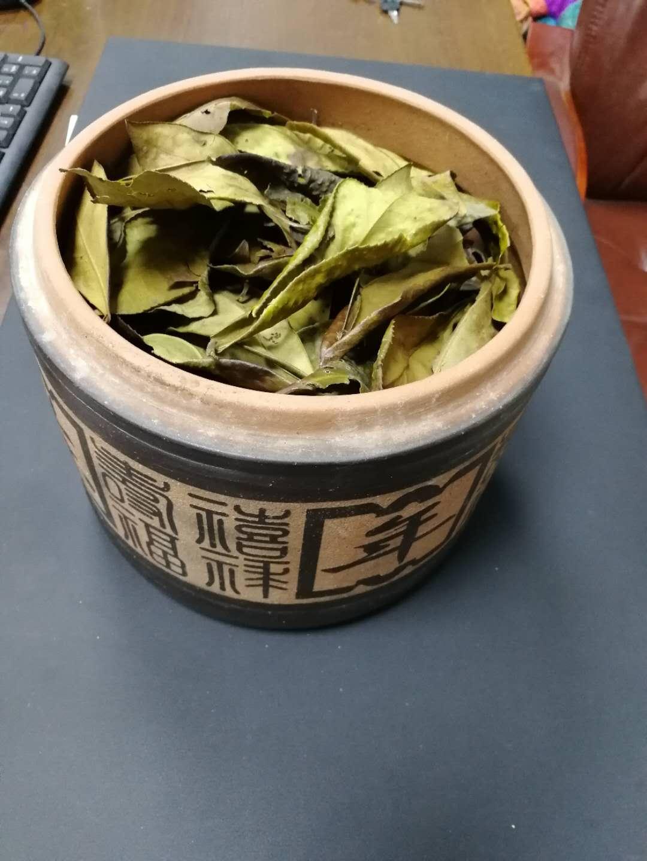 广州口碑好的影古毛茶低价批发,影古毛茶在哪有
