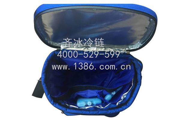 冷藏包代理商|供應福建專業的冷藏冷鏈包