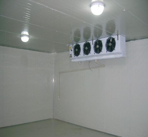 广西保鲜冷库建设-划算的冷库广西弘雪制冷供应