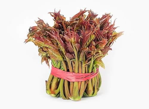 优质香椿芽批发_品质好的香椿芽出售