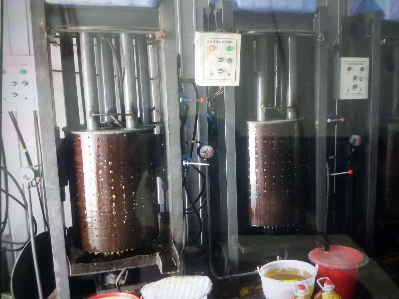 铁岭榨油机厂家|辽宁的液压榨油机供应