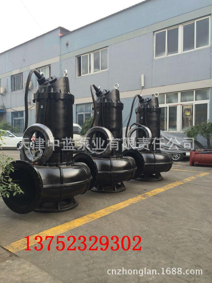 天津市信誉好的无堵塞污水潜水泵供应商是哪家|抢手的专业潜水轴流泵厂家