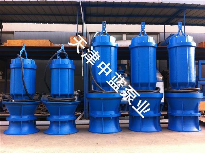 天津中蓝泵业供应厂家直销的大流量潜水轴流泵_供销潜水轴流泵