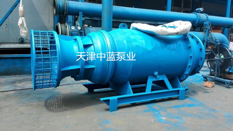 倾销雪橇式轴流泵——天津质量好的雪橇式轴流泵_厂家直销