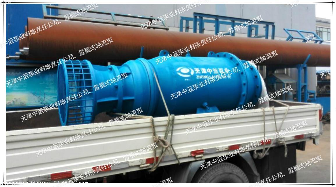 想买质量良好的雪橇式轴流泵,就来天津中蓝泵业,优质雪橇式轴流泵