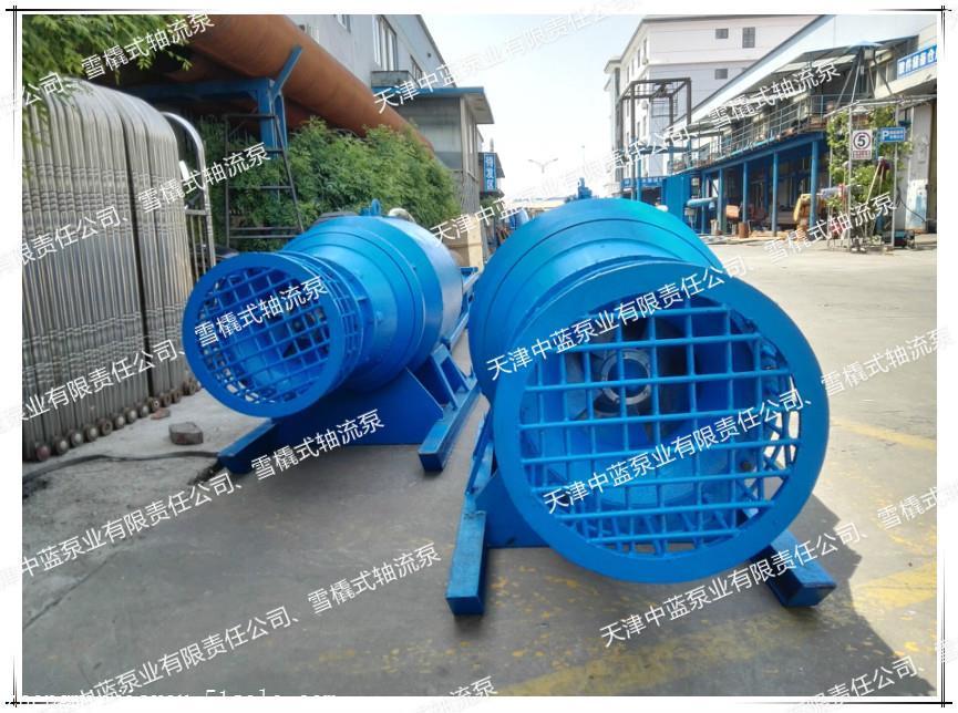 专业的雪橇式轴流泵_天津超好用的雪橇式轴流泵出售
