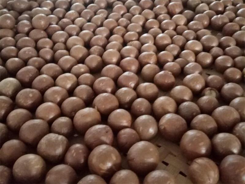 夏威夷果批发厂家_知名的广西澳洲坚果供应商_广西德仁生物科技