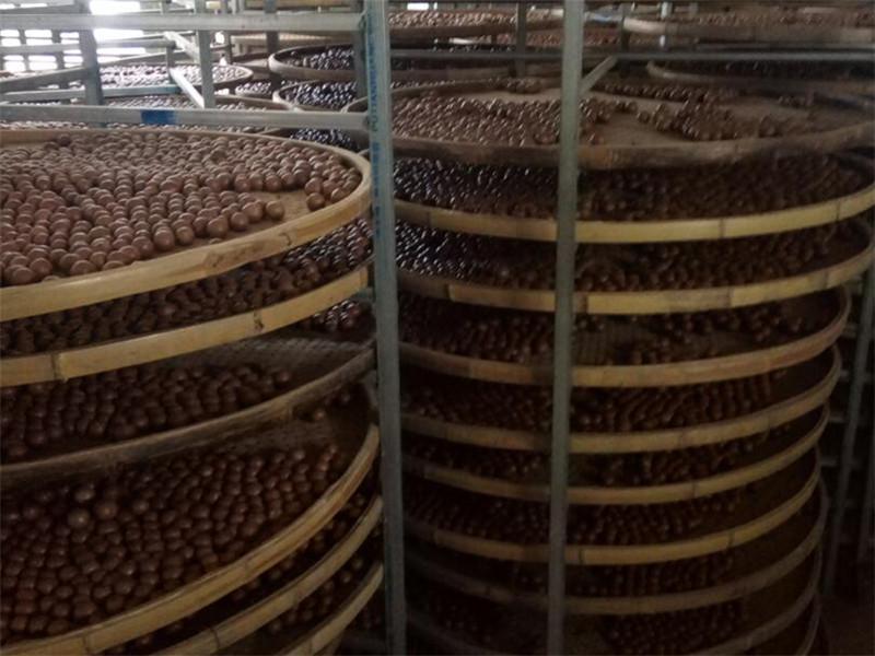 澳洲坚果回收-口碑好的广西澳洲坚果供应商-广西德仁生物科技