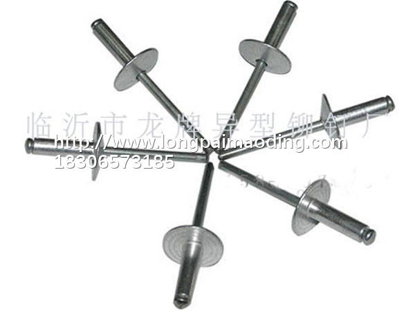 质量优良的拉铆钉【供应】,抽芯铆钉规格