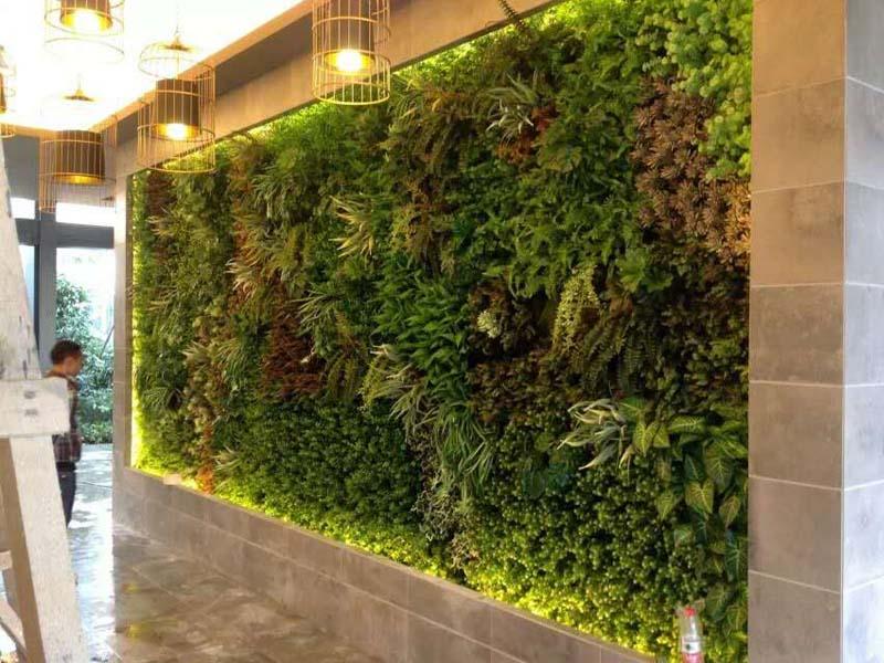 甘肃学校绿化|专业靠谱的学校绿化上哪找