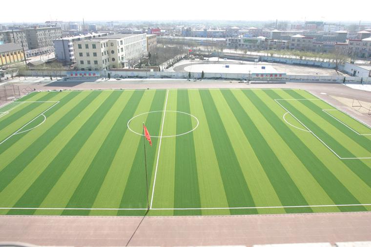 草坪养护,广州哪里有提供天然草坪足球场翻新