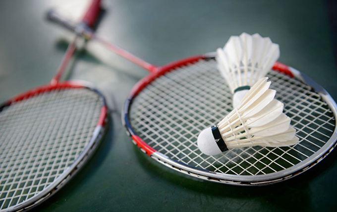 雪燕体育有品质的羽毛球——好用的羽毛球