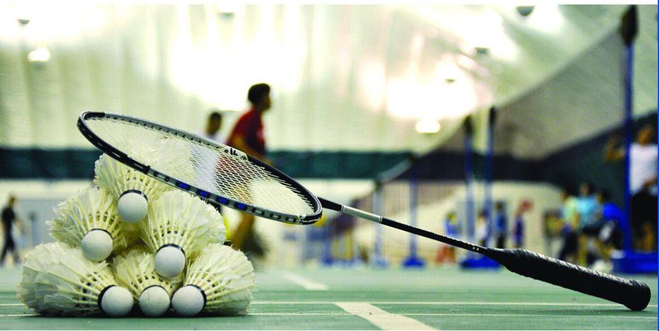 质量好的羽毛球美观实用雪燕体育供应,羽毛球