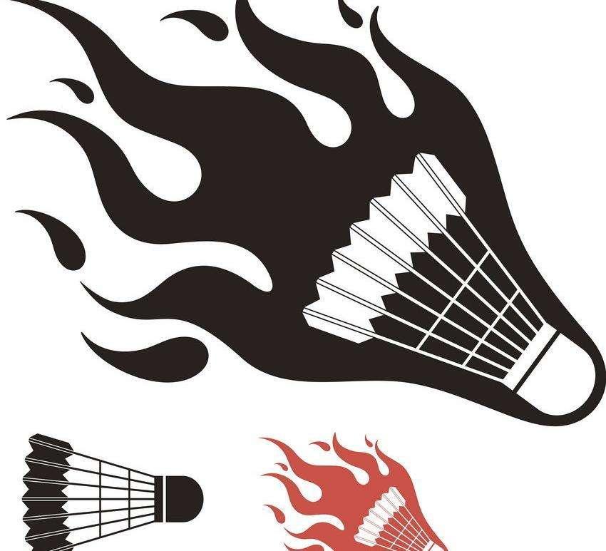 羽毛球美观实用-长期供应羽毛球品质可靠