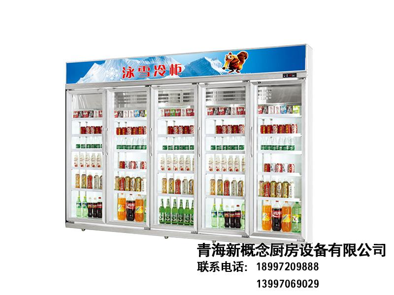 西宁双温冷柜_品质好的冷柜哪里买