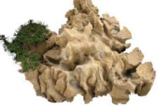 临沂地区品质好的园林石,如何选购园林石