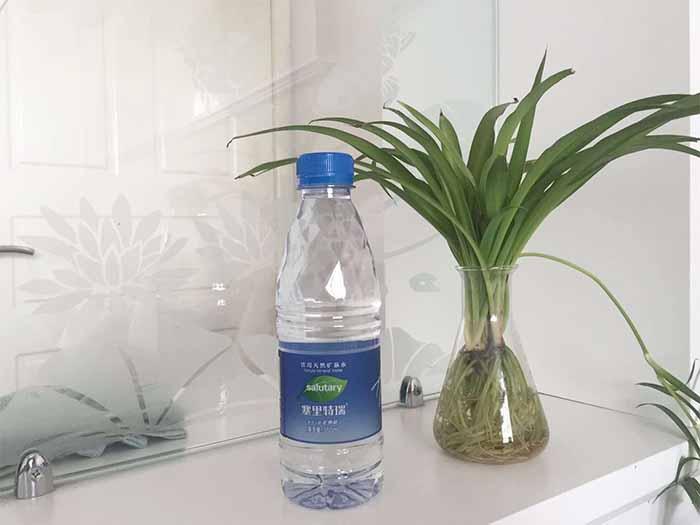 优惠的宁夏瓶装水宁夏海迪伦饮品供应 宁夏瓶装水供应